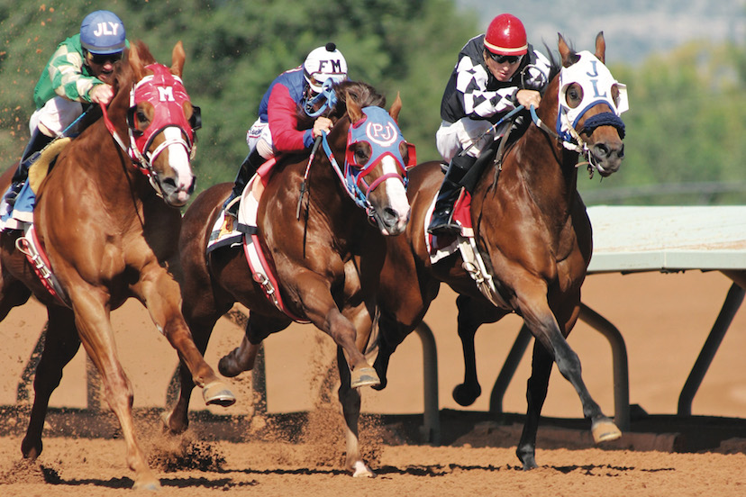 horse racing pack