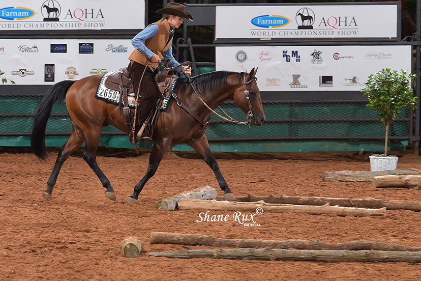 Cindy Hale shows JB Habanero Whiz to win the inaugural Ranch Trail Stakes at the 2020 AQHA World Show (Credit: Shane Rux Photography)