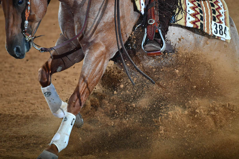close up of dirt flying as red roan reining horse performs a sliding stop (Credit: Alexis J. O'Boyle for Journal)