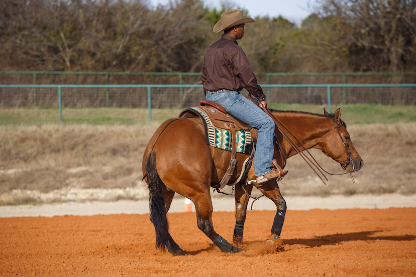Ed Harrison and bay reining horse spin lined up with reining center marker