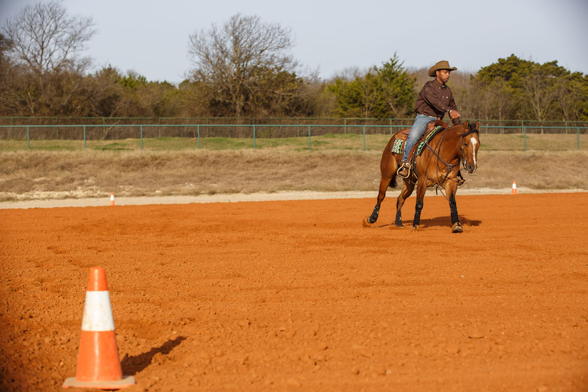 Ed Harrison and bay reining horse demonstrate a circle that is not lined up with the reining pattern center marker