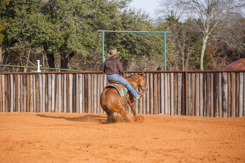 Ed Harrison and bay reining horse demonstrate stoppping too close to the end fence