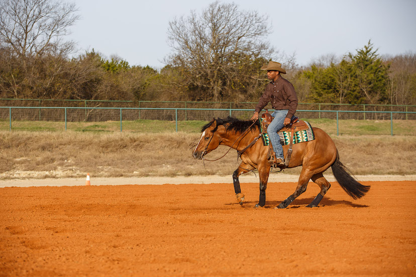 Ed Harrison and bay reining horse demonstrate spnning while not lined up with the reining marker