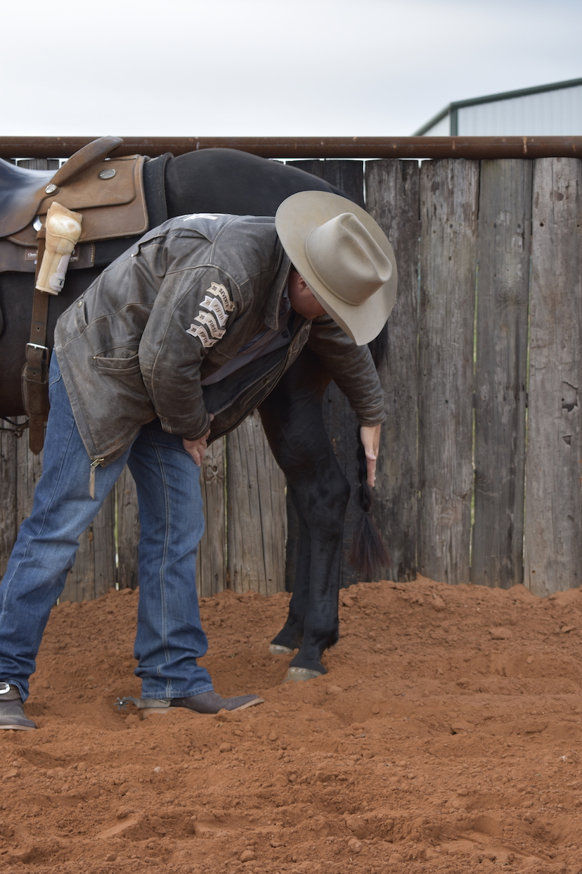 horseman demonstrates imaginary line to illustrate sickle- or cow-hocked horse
