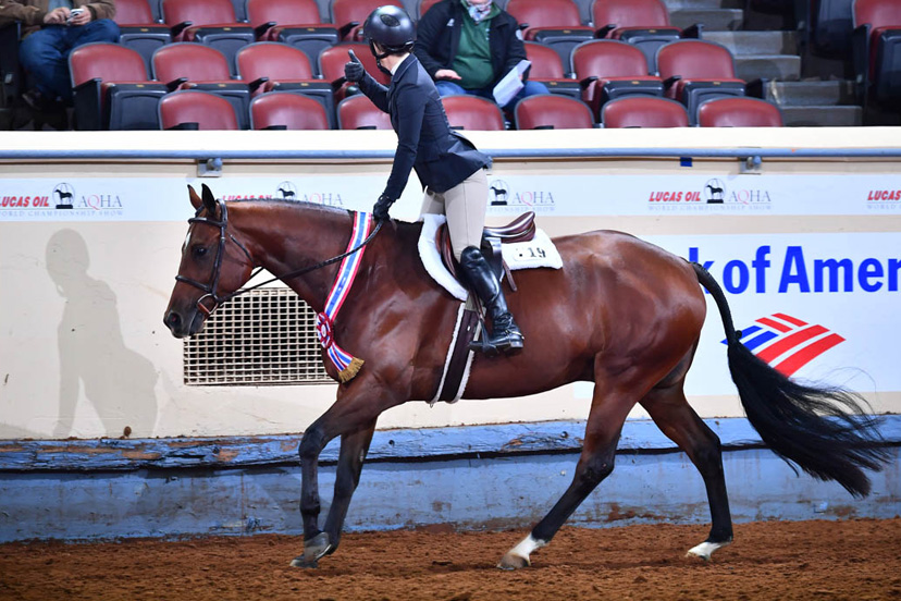 Lainie DeBoer and DGS Dont Tell Tales won junior working hunter and junior hunter hack at the 2018 AQHA World Show (Credit: Journal)