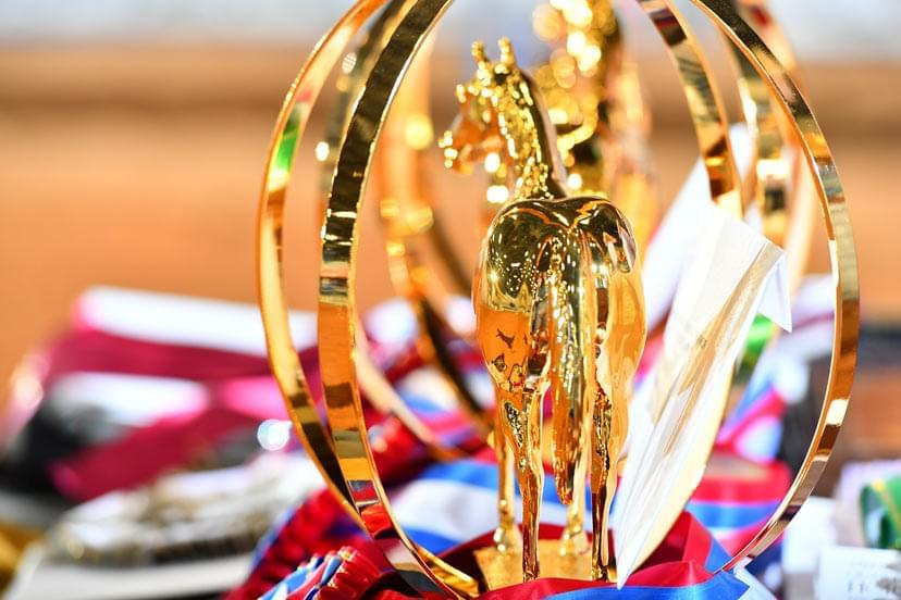 AQHA world champion trophy (Credit: Journal)