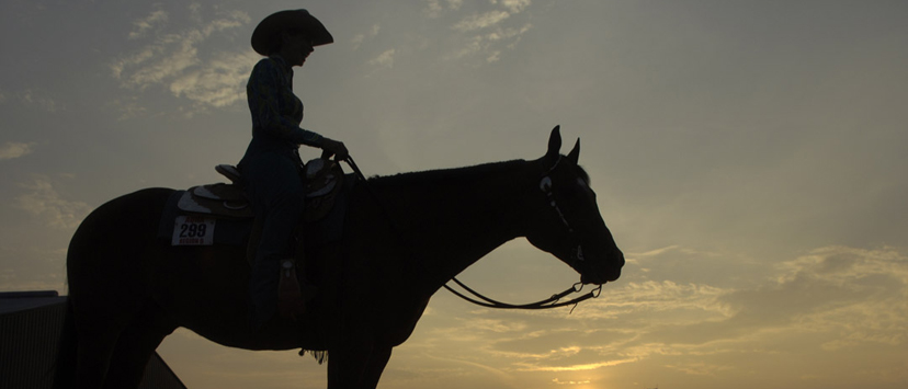 generic rider at sunset at AQHA show