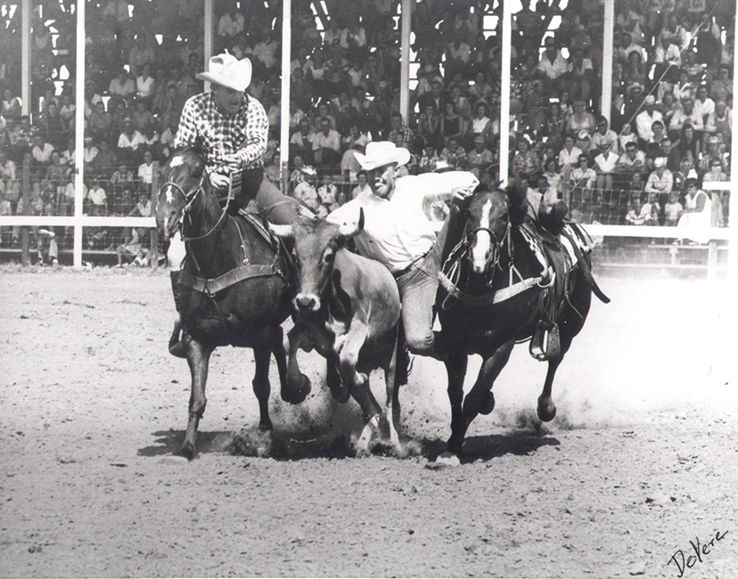 Pro Rodeo Hall of Fame bulldogging horse Baby Doll Combs (Credit: courtesy American Quarter Horse Hall of Fame)