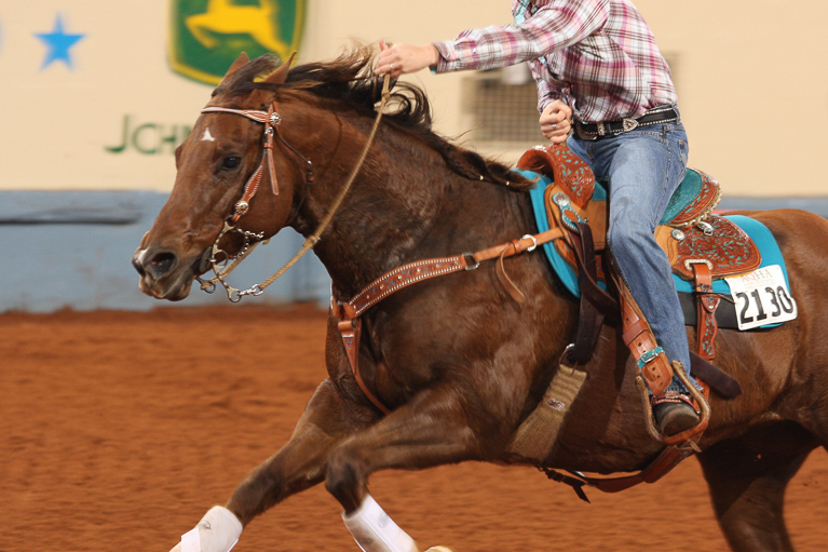 sorrel barrel horse running (Credit: Journal)