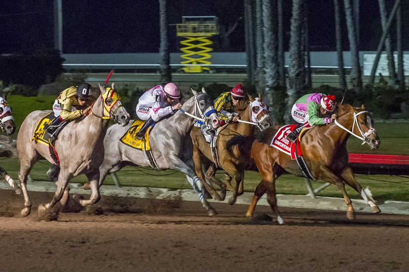 Runforyourlife 2019 Golden State Million Futurity